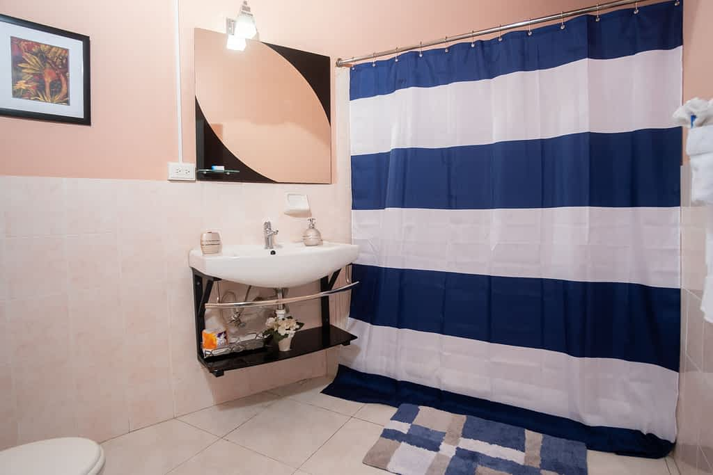 Jamaica Villa Bathroom