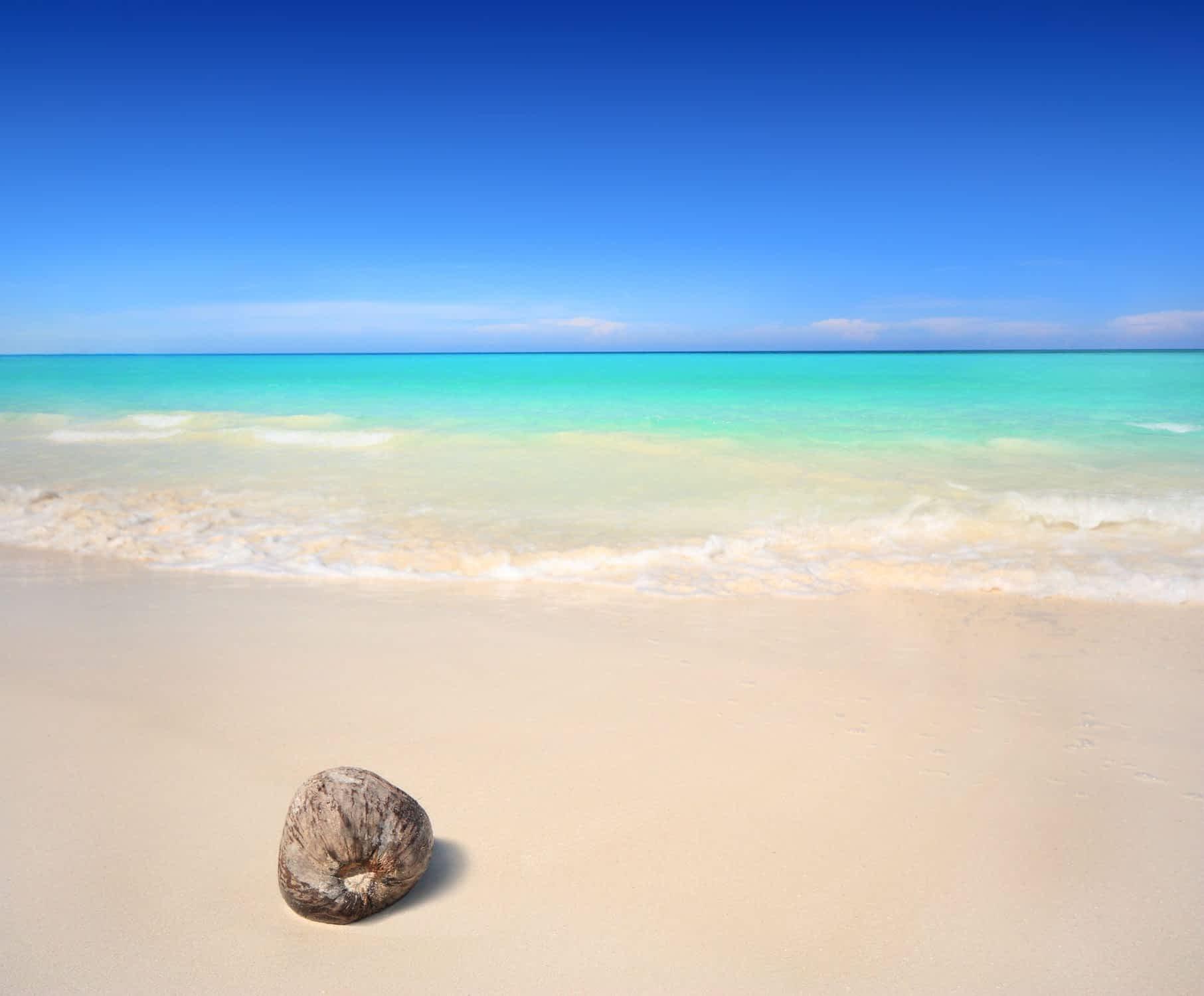Beach In Jamaica Winter