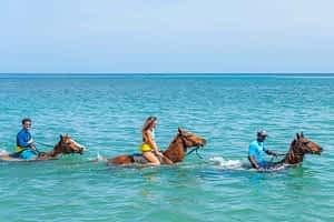Jamaica villas offers activities