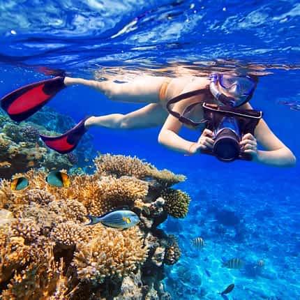Snorkeling Ocho Rios