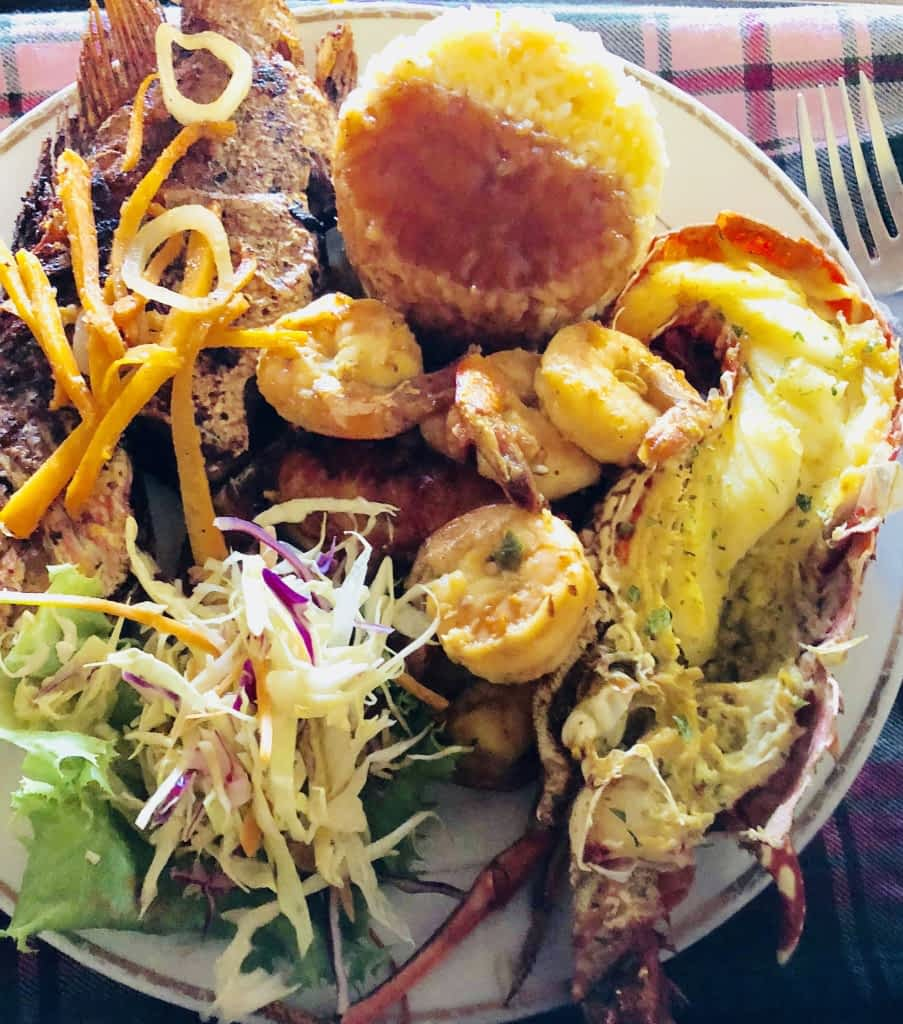Dinner_ Lobster tails, shrimp, fish, rice and salad